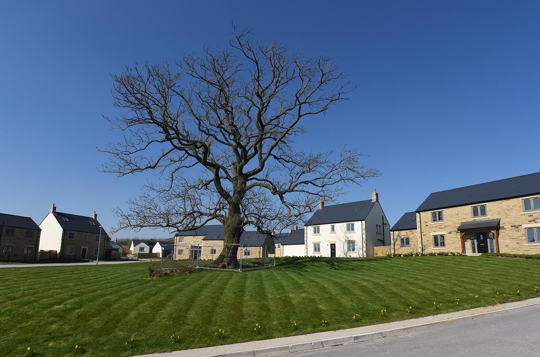the warren hurst green, new homes for sale
